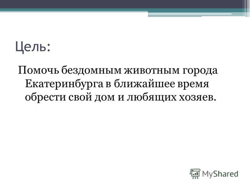 Цель: Помочь бездомным животным города Екатеринбурга в ближайшее время обрести свой дом и любящих хозяев.