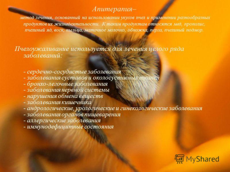 Апитерапия– метод лечения, основанный на использовании укусов пчел и применении разнообразных продуктов их жизнедеятельности. К таким продуктам относятся мед, прополис, пчелиный яд, воск, пыльца, маточное молочко, обножка, перга, пчелиный подмор. Пче