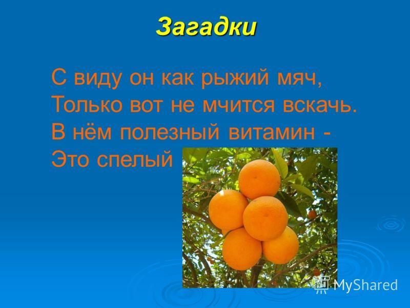 Загадки С виду он как рыжий мяч, Только вот не мчится вскачь. В нём полезный витамин - Это спелый...