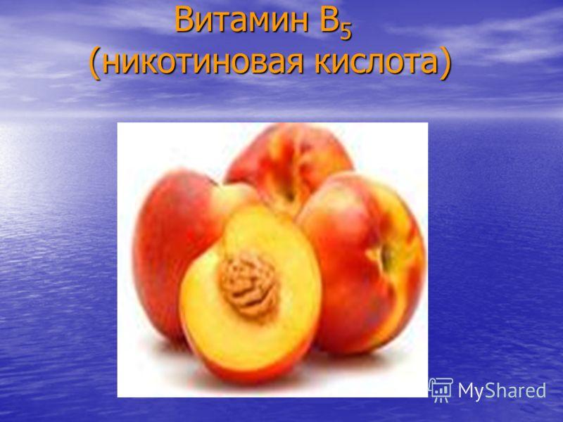 Витамин В 5 (никотиновая кислота) Витамин В 5 (никотиновая кислота)