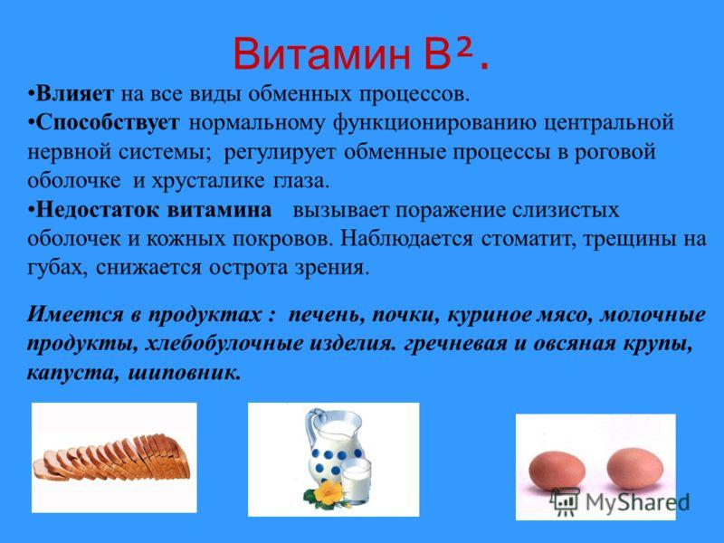 Витамин B. Влияет на все виды обменных процессов. Способствует нормальному функционированию центральной нервной системы; регулирует обменные процессы в роговой оболочке и хрусталике глаза. Недостаток витамина вызывает поражение слизистых оболочек и к