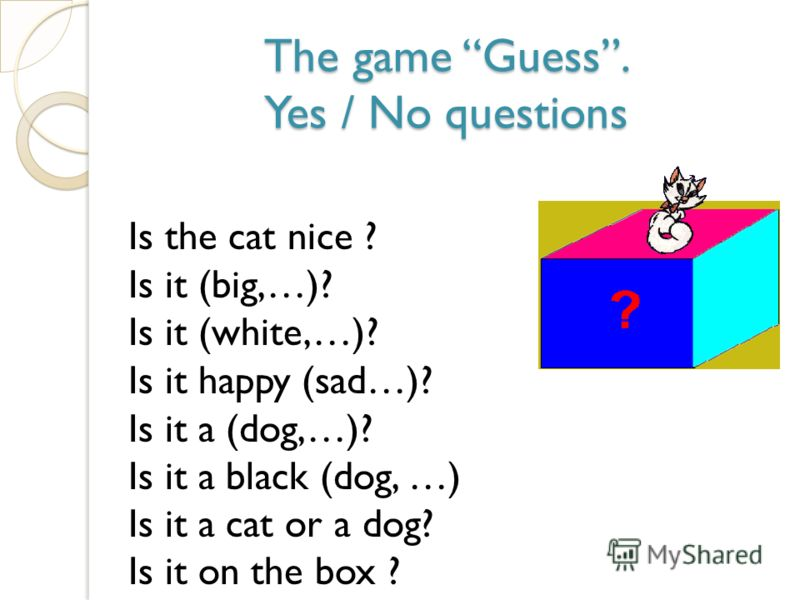 The game Guess. Yes / No questions Is the cat nice ? Is it (big,…)? Is it (white,…)? Is it happy (sad…)? Is it a (dog,…)? Is it a black (dog, …) Is it a cat or a dog? Is it on the box ?