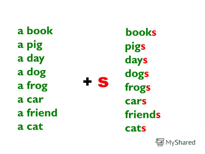 a book a pig a day a dog a frog a car a friend a cat + s+ s books pigs days dogs frogs cars friends cats