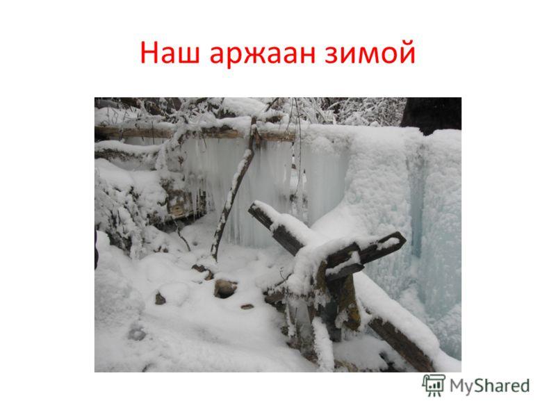 Наш аржаан зимой