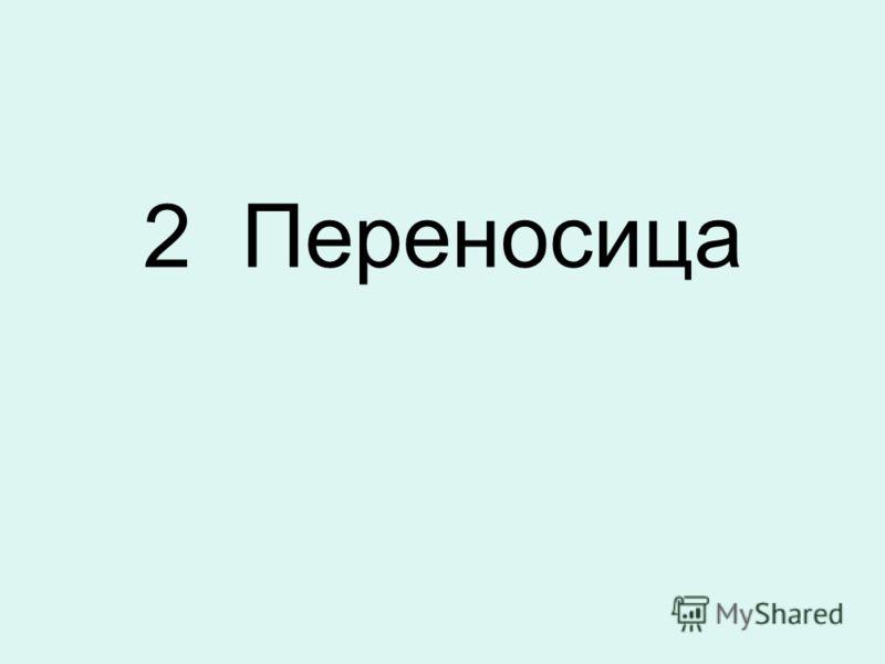 2 Переносица