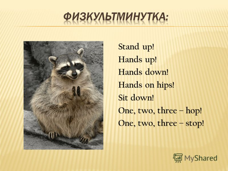 Stand up! Hands up! Hands down! Hands on hips! Sit down! One, two, three – hop! One, two, three – stop!