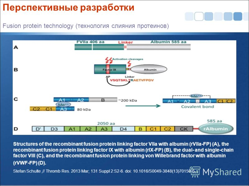 Structures of the recombinant fusion protein linking factor VIIa with albumin (rVIIa-FP) (A), the recombinant fusion protein linking factor IX with albumin (rIX-FP) (B), the dual- and single-chain factor VIII (C), and the recombinant fusion protein l