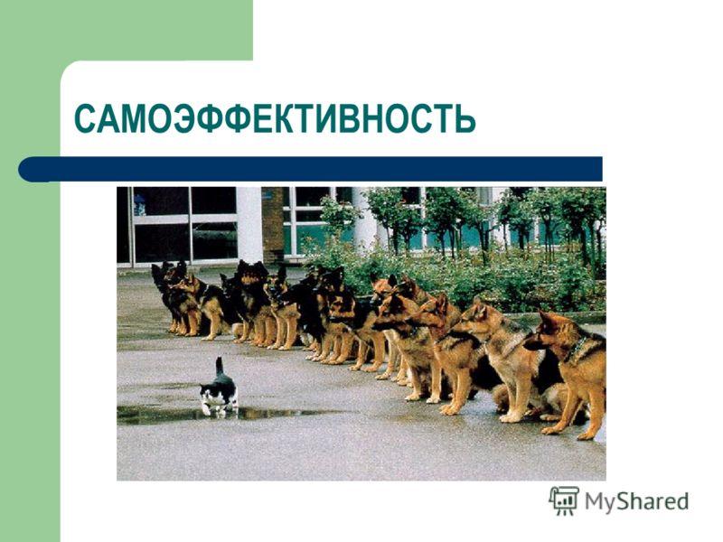 САМОЭФФЕКТИВНОСТЬ