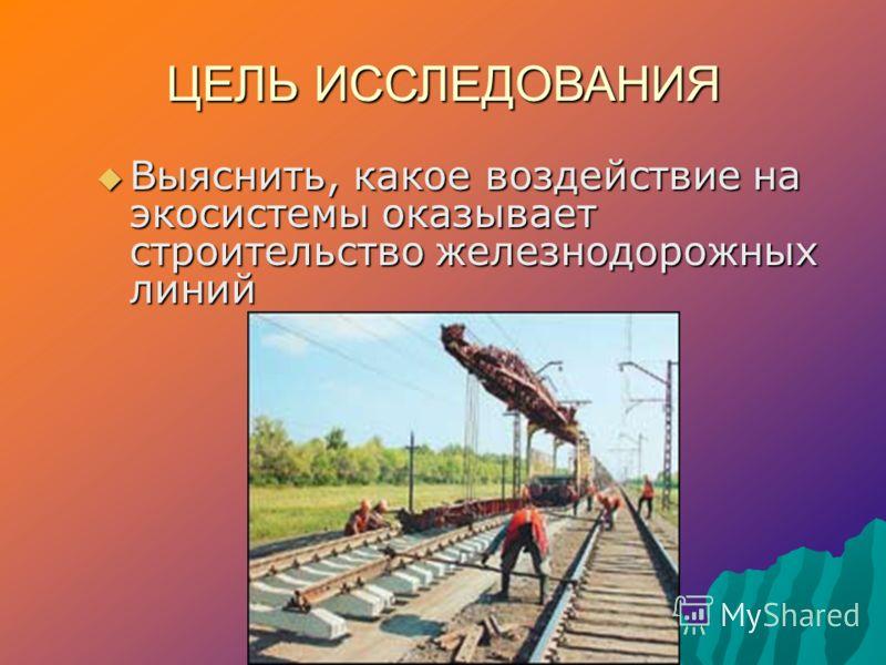 ЦЕЛЬ ИССЛЕДОВАНИЯ Выяснить, какое воздействие на экосистемы оказывает строительство железнодорожных линий Выяснить, какое воздействие на экосистемы оказывает строительство железнодорожных линий