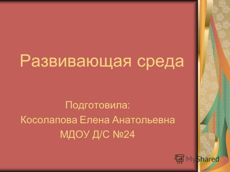 Развивающая среда Подготовила: Косолапова Елена Анатольевна МДОУ Д/С 24