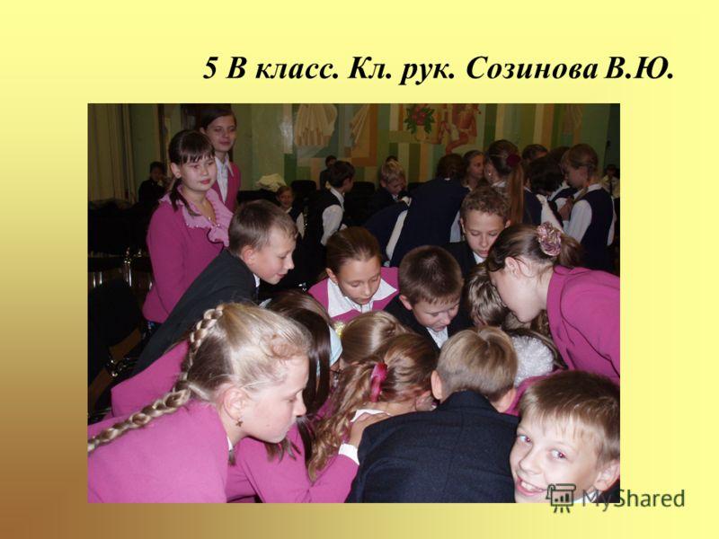 5 В класс. Кл. рук. Созинова В.Ю.