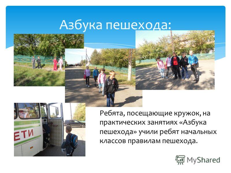 Азбука пешехода: Ребята, посещающие кружок, на практических занятиях «Азбука пешехода» учили ребят начальных классов правилам пешехода.