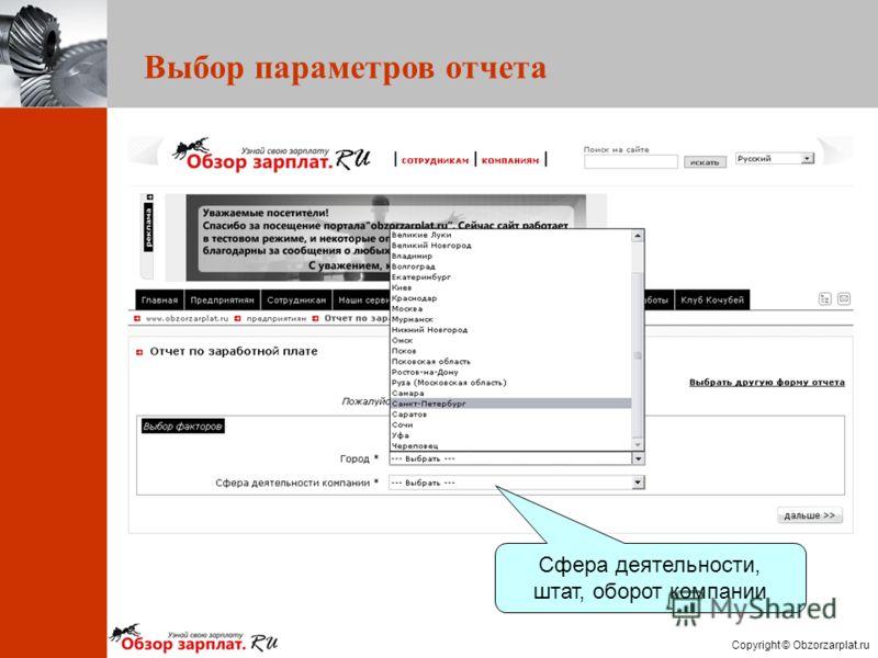 Copyright © Obzorzarplat.ru Выбор параметров отчета Сфера деятельности, штат, оборот компании