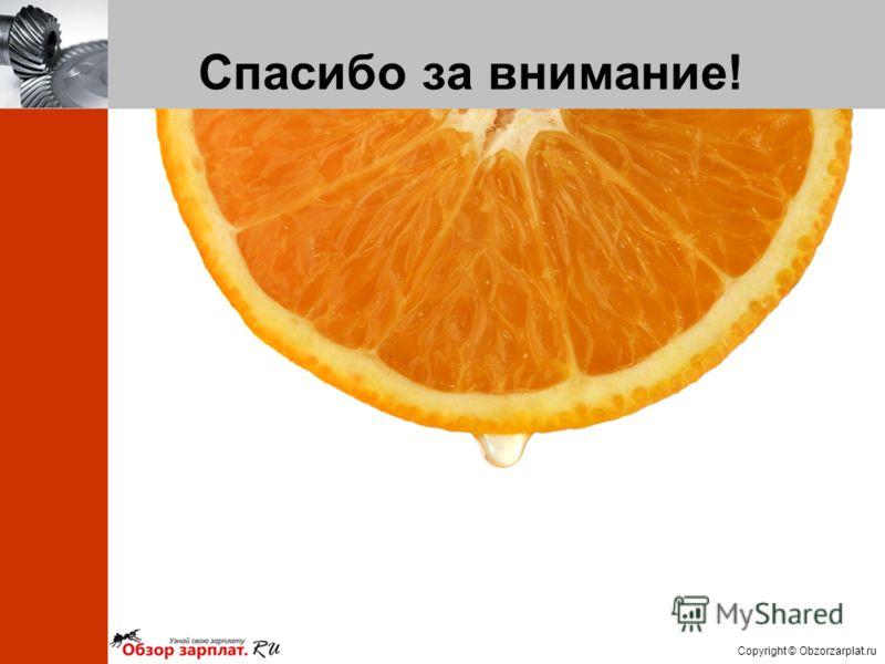 Copyright © Obzorzarplat.ru Спасибо за внимание!