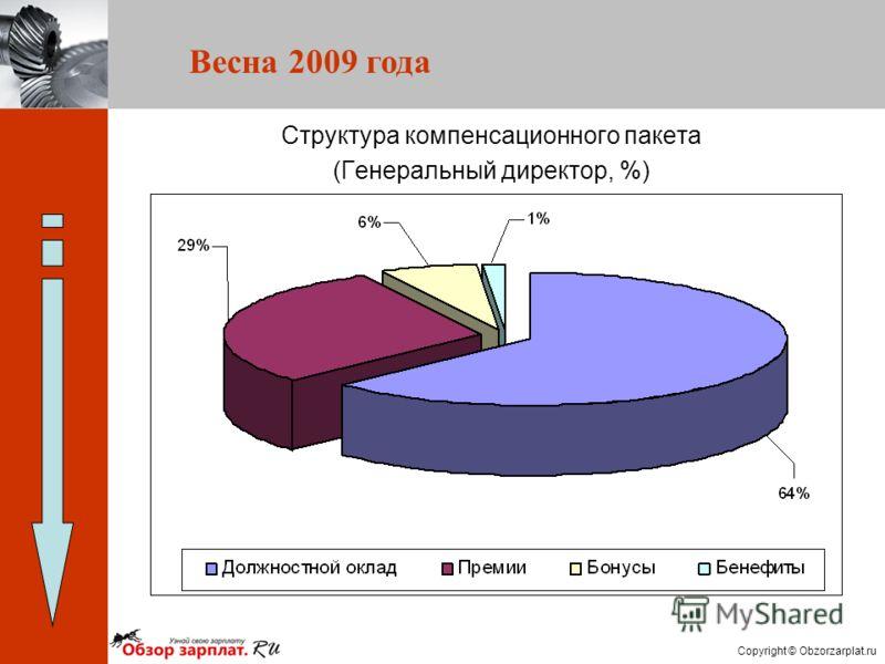 Copyright © Obzorzarplat.ru Структура компенсационного пакета (Генеральный директор, %) Весна 2009 года