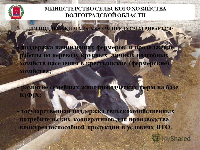 МИНИСТЕРСТВО СЕЛЬСКОГО ХОЗЯЙСТВА ВОЛГОГРАДСКОЙ ОБЛАСТИ ДЛЯ ПОДДЕРЖКИ МАЛЫХ ФОРМ ПРЕДУСМАТРИВАЕТСЯ: - поддержка начинающих фермеров и продолжение работы по переводу крупных личных подсобных хозяйств населения в крестьянские (фермерские) хозяйства; - р