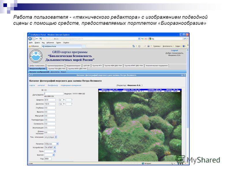 Работа пользователя - «технического редактора» с изображением подводной сцены с помощью средств, предоставляемых портлетом «Биоразнообразие»