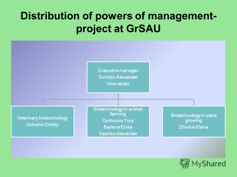 Distribution of powers of management- project at GrSAU Executive manager Sviridov Alexander Vice-rector Veterinary biotechnology Voloshin Dmitry Biotechnology in animal farming Gorbunov Yury Barieva Elvira Deshko Alexander Biotechnology in plant grow