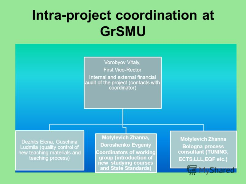 Intra-project coordination at GrSMU Vorobyov Vitaly, First Vice-Rector Internal and external financial audit of the project (contacts with coordinator) Dezhits Elena, Guschina Ludmila (quality control of new teaching materials and teaching process) M