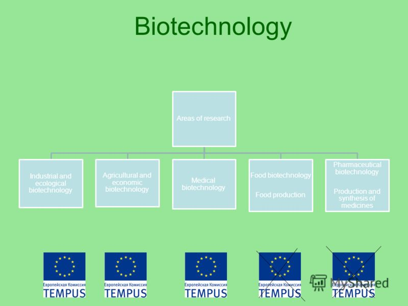 Biotechnology Areas of research Industrial and ecological biotechnology Agricultural and economic biotechnology Medical biotechnology Food biotechnology Food production Pharmaceutical biotechnology Production and synthesis of medicines