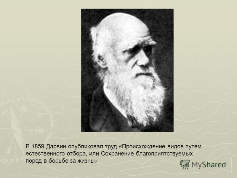 В 1859 Дарвин опубликовал труд «Происхождение видов путем естественного отбора, или Сохранение благоприятствуемых пород в борьбе за жизнь»