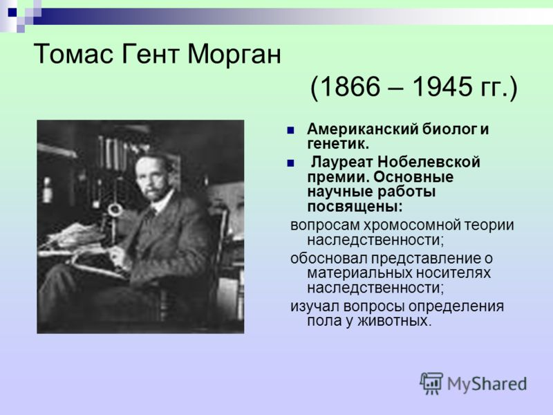 Томас Гент Морган (1866 – 1945 гг.) Американский биолог и генетик. Лауреат Нобелевской премии. Основные научные работы посвящены: вопросам хромосомной теории наследственности; обосновал представление о материальных носителях наследственности; изучал