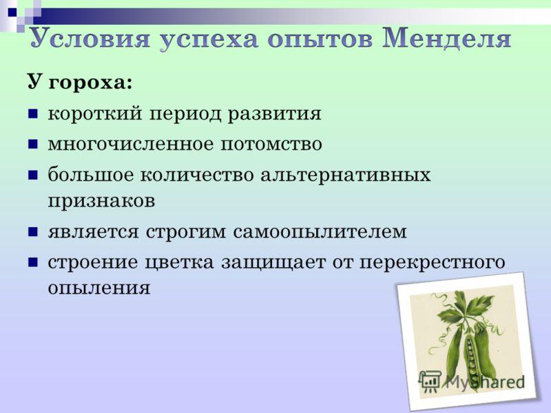 У гороха: короткий период развития многочисленное потомство большое количество альтернативных признаков является строгим самоопылителем строение цветка защищает от перекрестного опыления