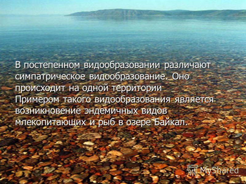 В постепенном видообразовании различают симпатрическое видообразование. Оно происходит на одной территории Примером такого видообразования является возникновение эндемичных видов млекопитающих и рыб в озере Байкал.