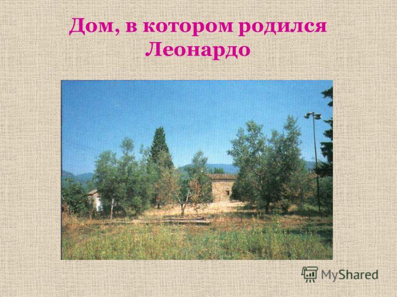Дом, в котором родился Леонардо
