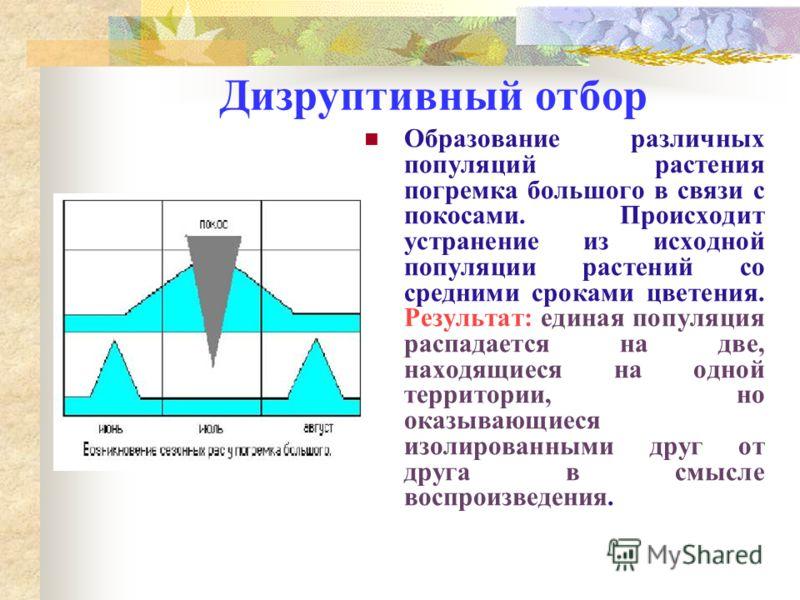 """Презентация на тему: """"Борьба"""
