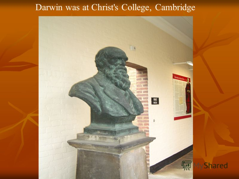 Darwin was at Christ's College, Cambridge