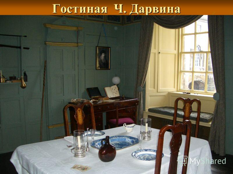 Гостиная Ч. Дарвина
