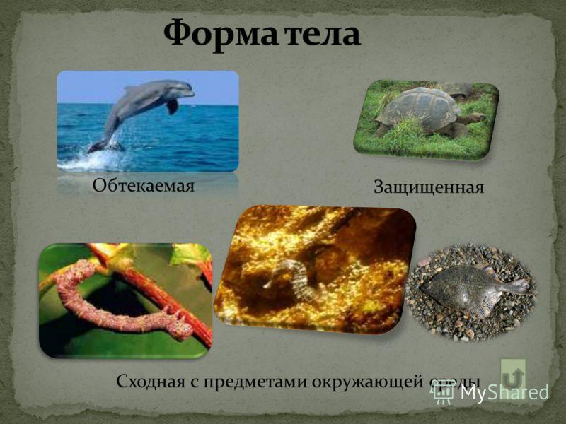 Обтекаемая Защищенная Сходная с предметами окружающей среды