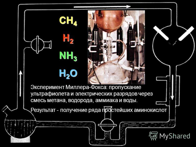 Эксперимент Миллера-Фокса: пропускание ультрафиолета и электрических разрядов через смесь метана, водорода, аммиака и воды. Результат - получение ряда простейших аминокислот CH 4 H 2 NH 3 H 2 O