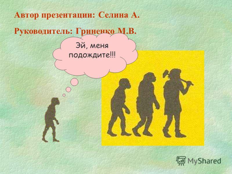 Автор презентации: Селина А. Руководитель: Гриненко М.В. Эй, меня подождите!!!
