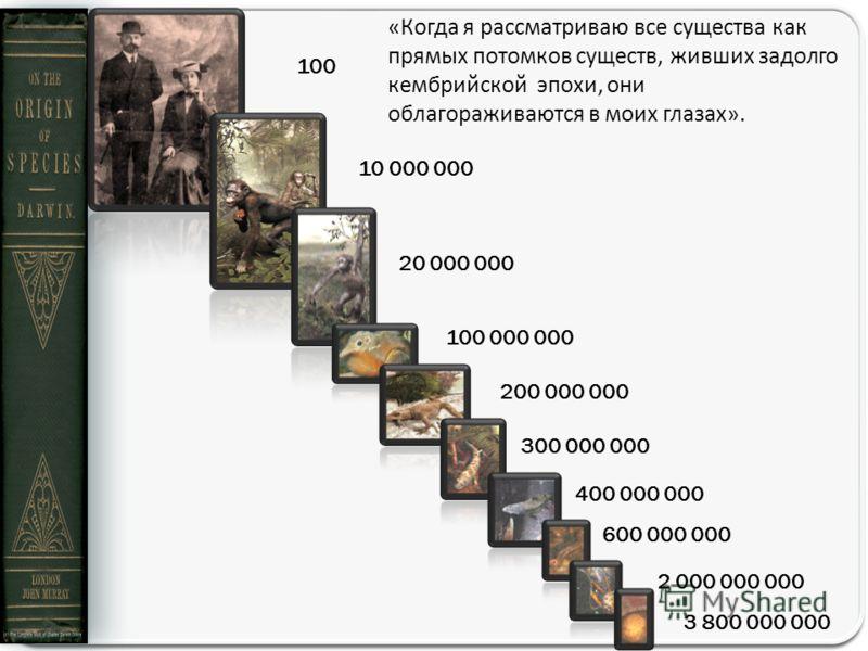 «Когда я рассматриваю все существа как прямых потомков существ, живших задолго кембрийской эпохи, они облагораживаются в моих глазах». 100 10 000 000 20 000 000 100 000 000 200 000 000 300 000 000 400 000 000 600 000 000 2 000 000 000 3 800 000 000