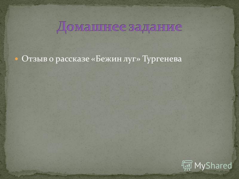 Отзыв о рассказе «Бежин луг» Тургенева