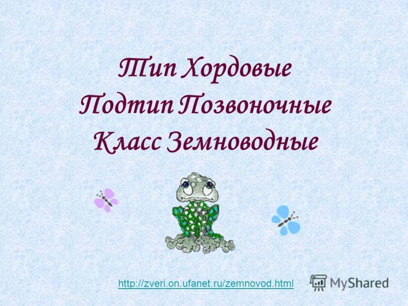 Тип Хордовые Подтип Позвоночные Класс Земноводные http://zveri.on.ufanet.ru/zemnovod.html