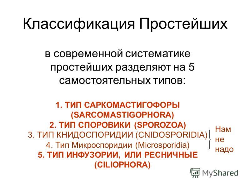 Классификация Простейших в современной систематике простейших разделяют на 5 самостоятельных типов: 1.ТИП САРКОМАСТИГОФОРЫ (SARCOMASTIGOPHORA) 2.ТИП СПОРОВИКИ (SPOROZOA) 3.ТИП КНИДОСПОРИДИИ (CNIDOSPORIDIA) 4.Тип Микроспоридии (Microsporidia) 5.ТИП ИН