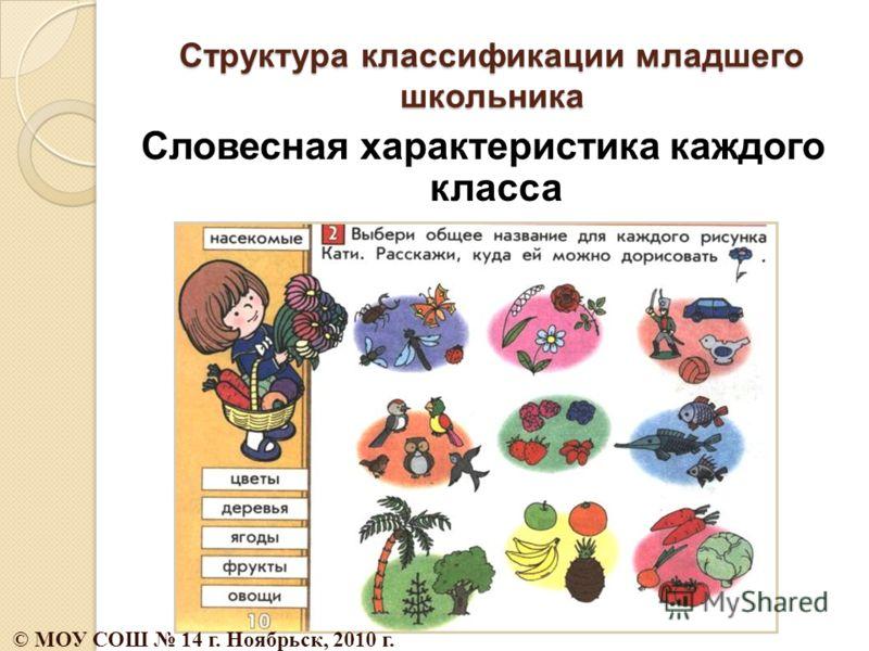 Структура классификации младшего школьника Словесная характеристика каждого класса © МОУ СОШ 14 г. Ноябрьск, 2010 г.