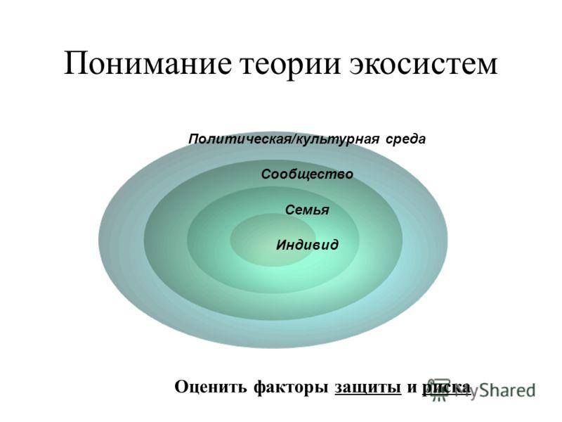 Понимание теории экосистем Оценить факторы защиты и риска Политическая/культурная среда Сообщество Семья Индивид
