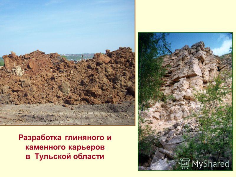 Разработка глиняного и каменного карьеров в Тульской области