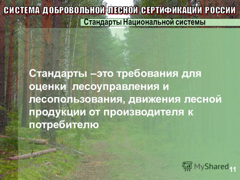 Стандарты –это требования для оценки лесоуправления и лесопользования, движения лесной продукции от производителя к потребителю 11