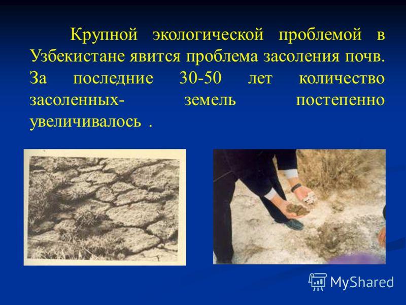 Крупной экологической проблемой в Узбекистане явится проблема засоления почв. За последние 30-50 лет количество засоленных- земель постепенно увеличивалось.