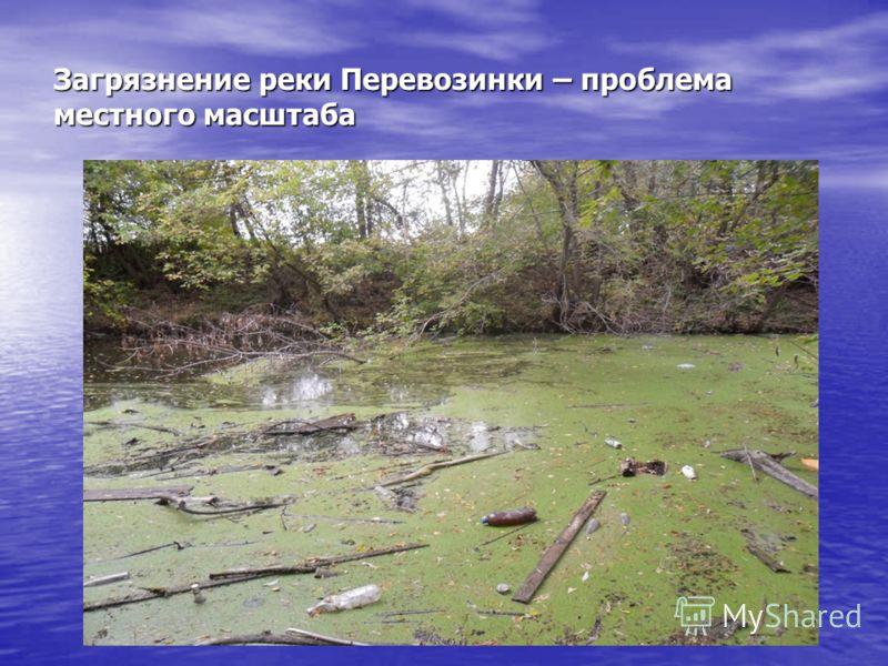 Загрязнение реки Перевозинки – проблема местного масштаба