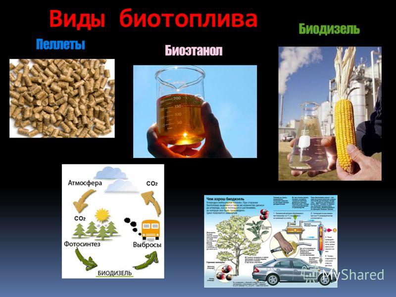Биоэтанол Пеллеты Биодизель Виды биотоплива