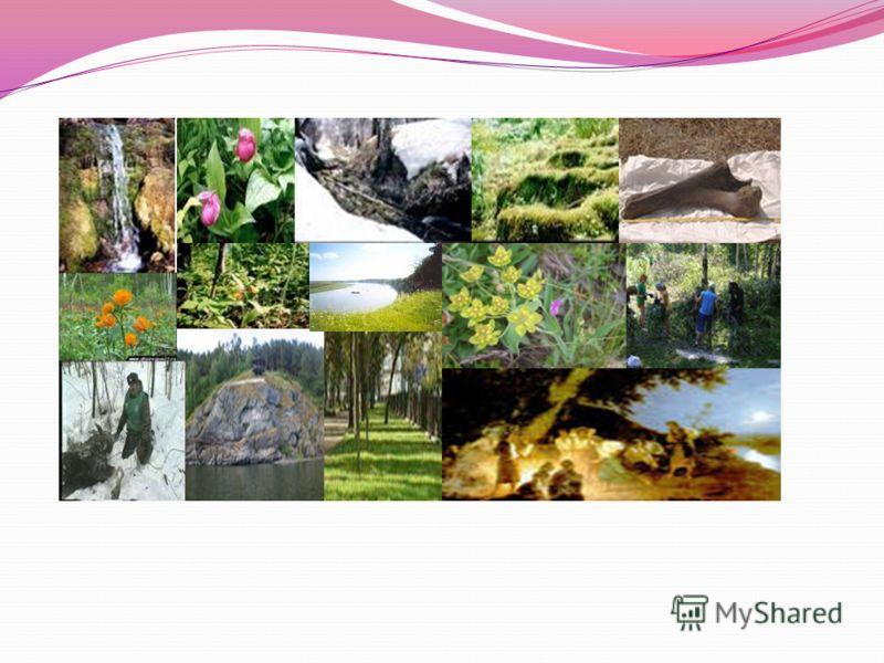 ОСОБО ОХРАНЯЕМЫЕ ПРИРОДНЫЕ ОБЪЕКТЫ И ТЕРРИТОРИИ ТОМСКОЙ ОБЛАСТИ Особо охраняемые природные территории(ООПТ) предназначены для сохранения типичных и уникальных природных ландшафтов, разнообразия животного и растительного мира, охраны объектов природн