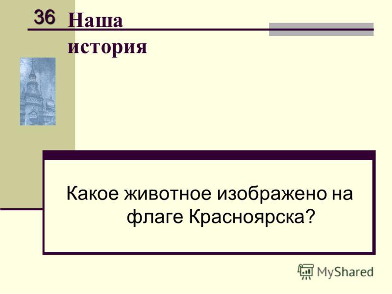 Наша история Какое животное изображено на флаге Красноярска? 36