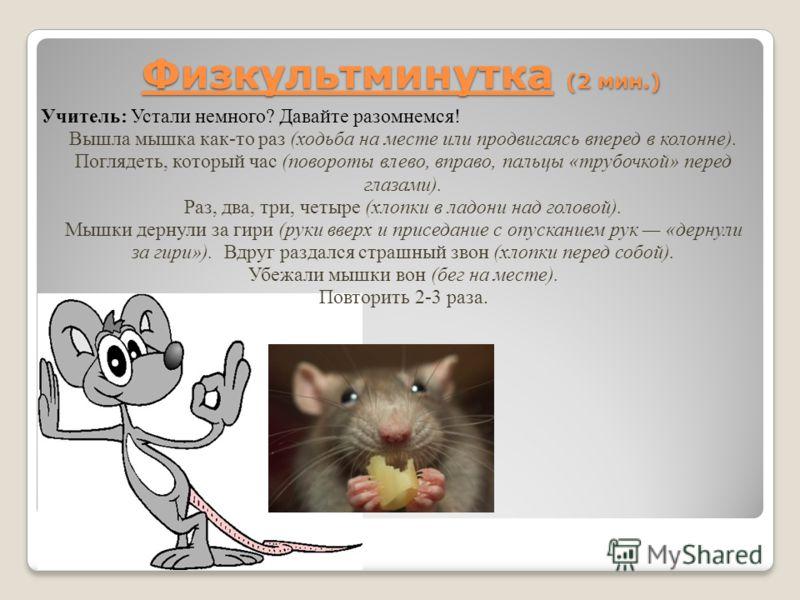 Физкультминутка (2 мин.) Учитель: Устали немного? Давайте разомнемся! Вышла мышка как-то раз (ходьба на месте или продвигаясь вперед в колонне). Поглядеть, который час (повороты влево, вправо, пальцы «трубочкой» перед глазами). Раз, два, три, четыре