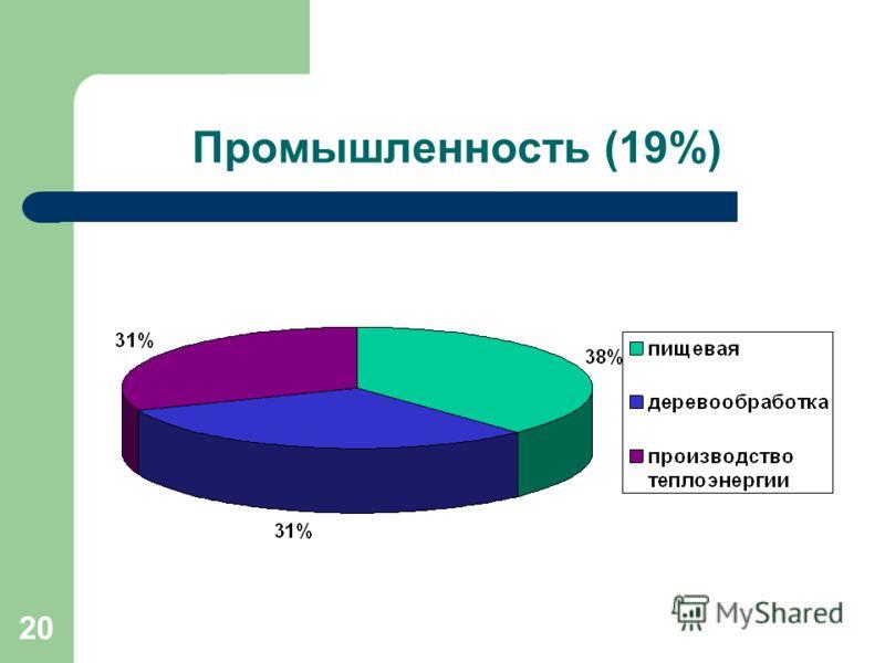 20 Промышленность (19%)